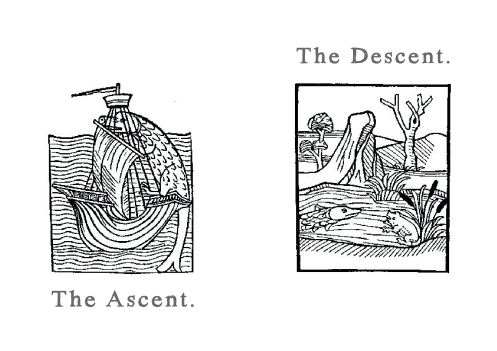 The Ascent The Descent cover